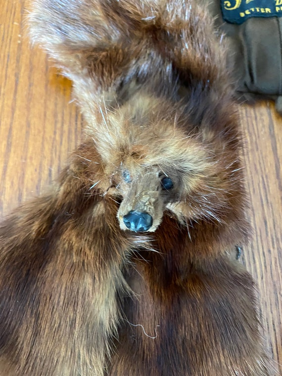 Retro Dark Mink Fur Collar Scarf with Heads Annis Furs and Bonus Pelt