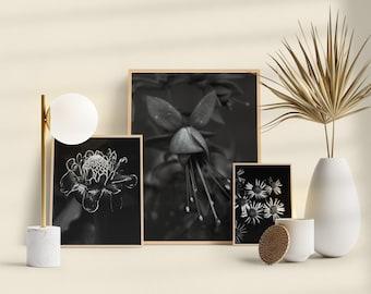Black & White exotic flowers print. Minimalist, modern printable wall art. set of 3 photos. Digital photo print for your home decor.