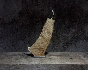 Vase oak wood
