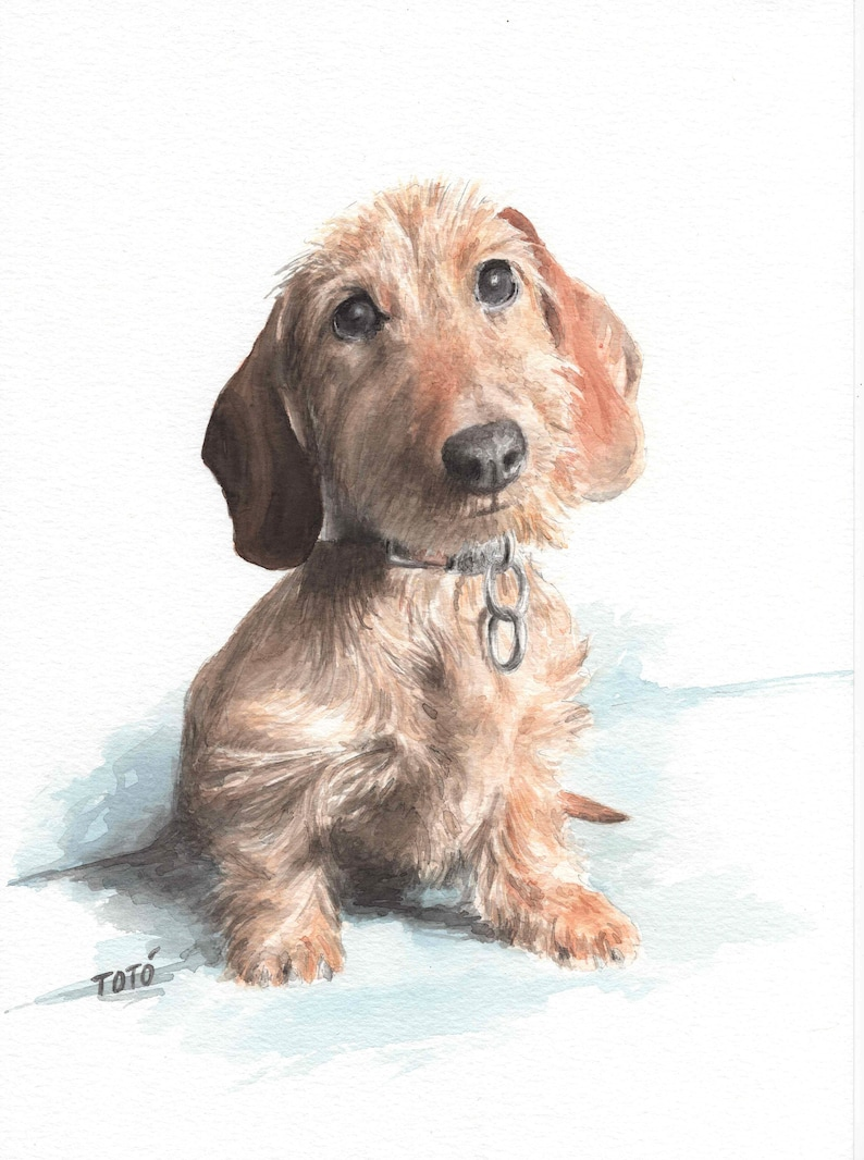 Custom pet portrait. Portrait of dogs. Portrait of cats etc. image 0