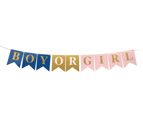 Boy or Girl Banner - Gender Reveal Party Decorations - Baby Shower, Pregnancy Announcement by Dazzle Your Day, Navy Blue, Blush Pink, Gold