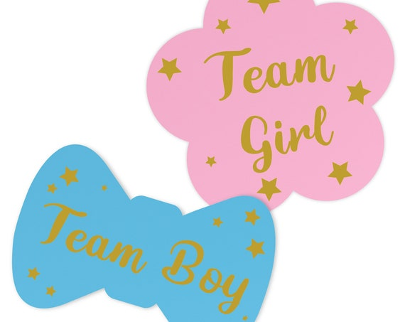 Baby Gender Reveal Stickers, Team Boy Team Girl Labels, 50 Blue 50 Pink, Gender Reveal Party Decorations, Boy or Girl Gender Reveal Ideas