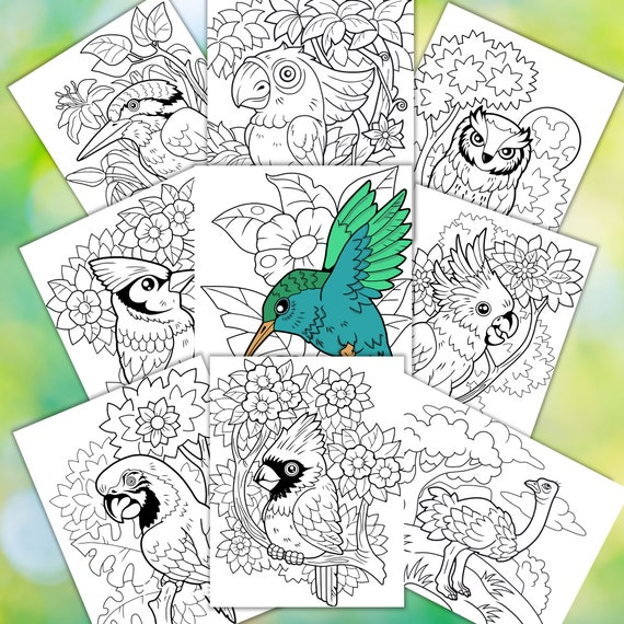 Bird Coloring Pages  Printable Coloring Pages Downloadable