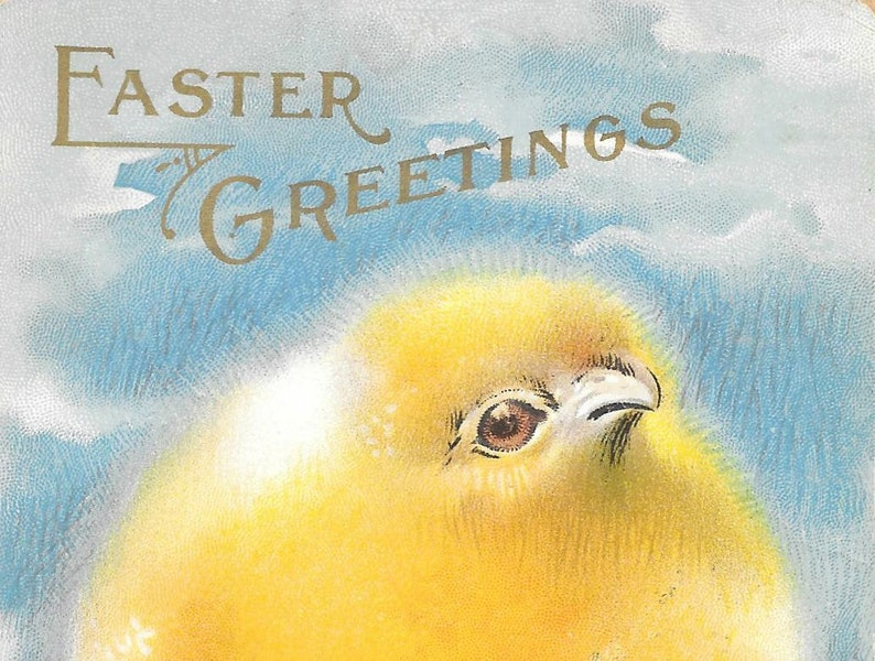 Antique Embossed Postcard Easter Greetings Yellow Chick