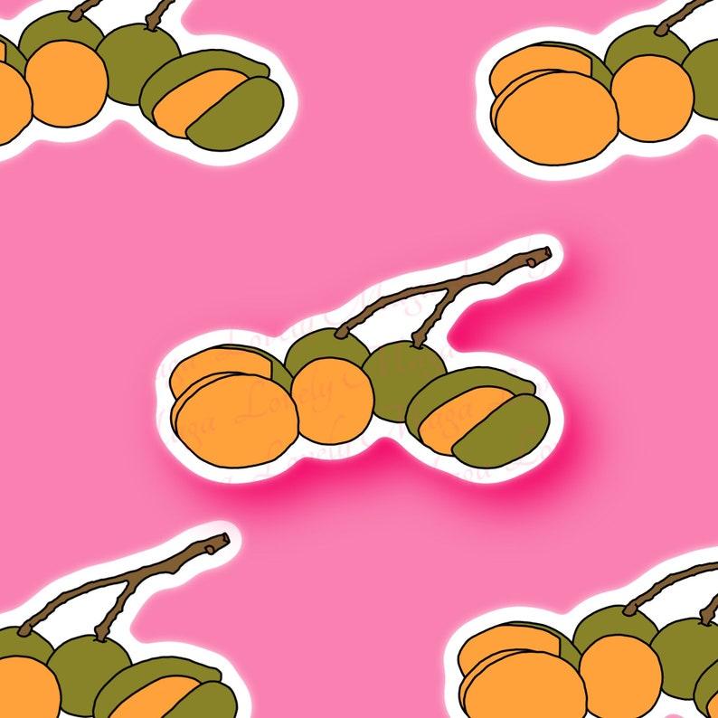 planner cartoon journal Quenepa fruit sticker Spanish Lime Sticker laptop notebook water bottle