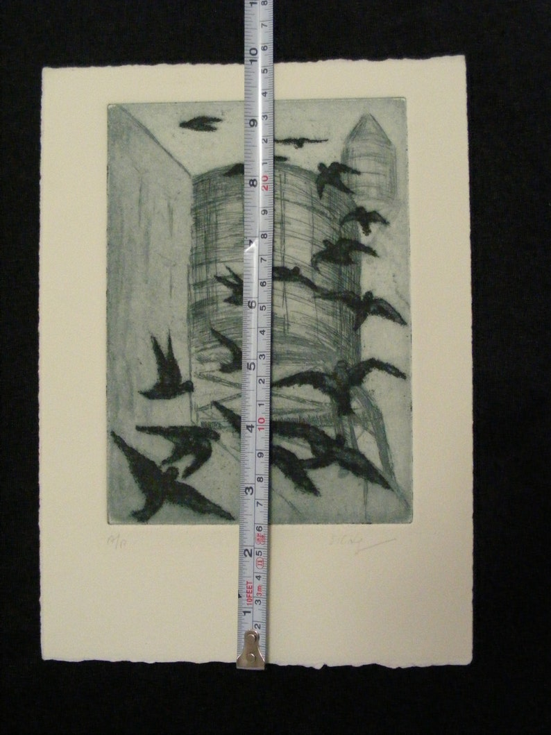 2 pieces Birds /& Watertower Lithographs 7 x 10 with birds Without birds