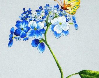 DOWNLOAD FILE (EK03) Blue Wildflowers embroidery design, Hand embroidery pattern, Hand embroidery designs