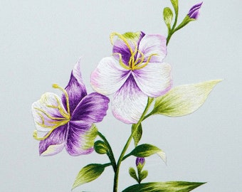 DOWNLOAD FILE (EK04) Blue Wildflowers embroidery design, Hand embroidery pattern, Hand embroidery designs
