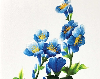 DOWNLOAD FILE (EK01) Blue wildflowers embroidery design, Hand embroidery pattern, Hand embroidery designs