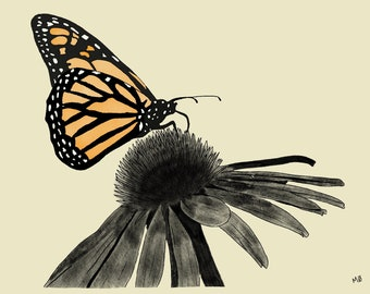 Butterfly Digital Drawing