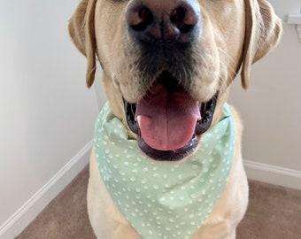 rainbow print over the collar dog bandana with free gift