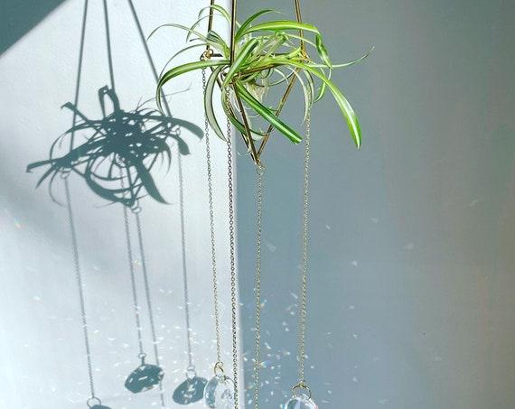 The Aiden - Crystal air plant holder, prisms, crystals, gift idea, plants, plant holder, reiki, zen, peaceful. suncatcher