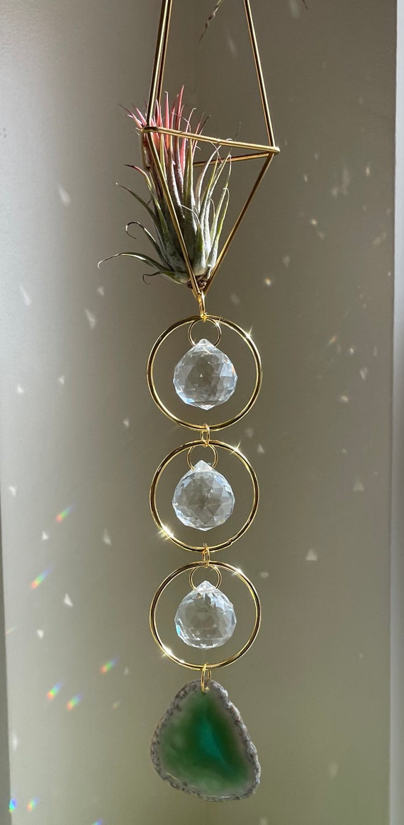 Three hoop crystal sun catcher air plant holder air plant included