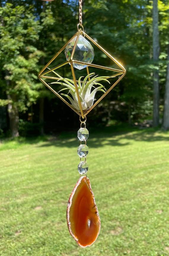 Pumpkin Spice Crystal Air Plant Sun Catcher