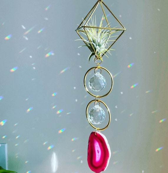 The Janica - Two hoop crystal air plant holder sun catcher with live air plant