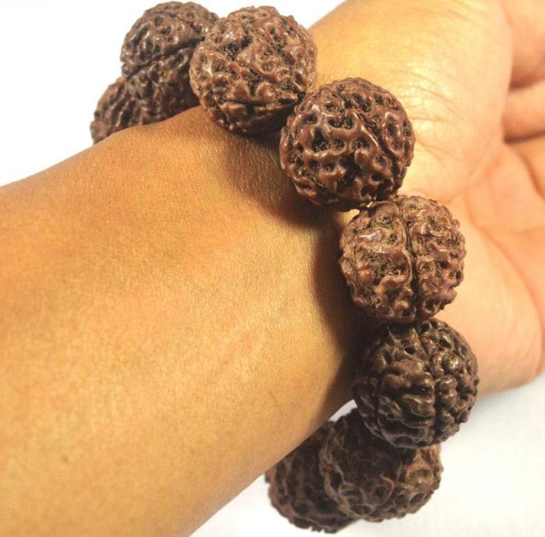 Rare Bracelet Jenitri Rudraksha seed Jumbo 25mm Natural Dark Brown Bracelet healthy.