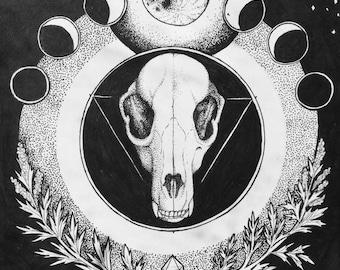 Raccoon Skull with Mugwort - Paper print