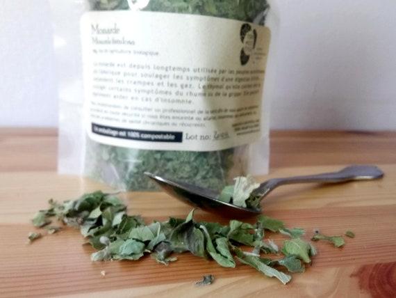 Monarde Herbe médicinale biologique