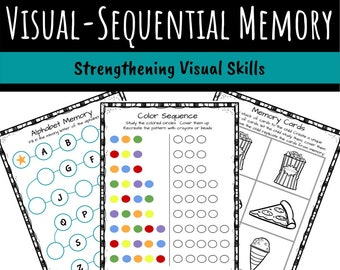 Visual-Sequential Memory Activity Packet