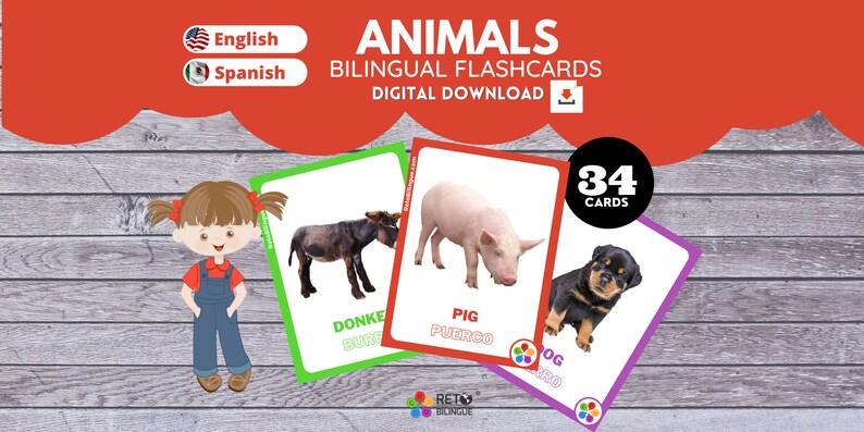 ANIMALS  Bilingual Montessori Flashcards  English // Spanish image 0
