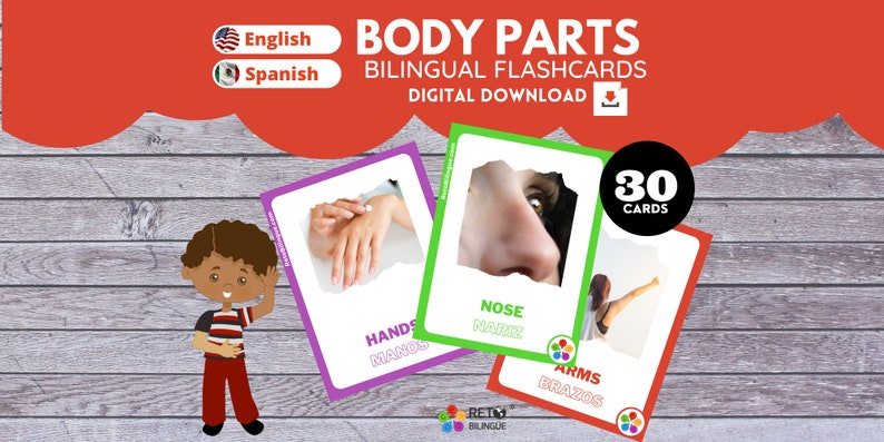BODY PARTS  Bilingual Montessori Flashcards  English // image 0