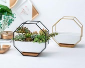 Black Metal Wall Planter Pot Succulent Ceramic White Mounted Wire Design Container Hanging Drainage Hole Bamboo Tray Saucer Geometric Modern