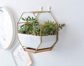 GOLD Metal Wall Planter Pot Succulent Ceramic White Mounted Wire Design Container Hanging Drainage Hole Bamboo Tray Saucer Geometric Modern