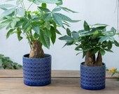Set of 2 - BLUE Diamond Pattern Ceramic Planter Pots Planters Plants Basket Vase Indoor Outdoor Garden Boho Bohemian 6.5 5.5 inches