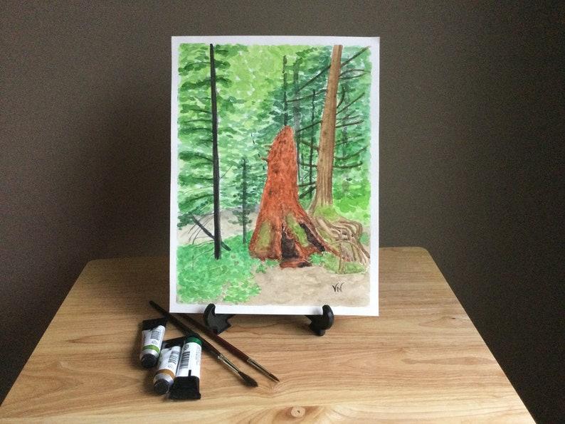 Watercolor Original  Rainforest Generations  image 0