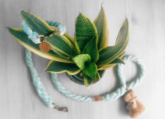 Olive Green-All natural cotton Pet Rope leash