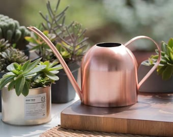 Rose Gold Metal Watering Can   Great for indoor plants