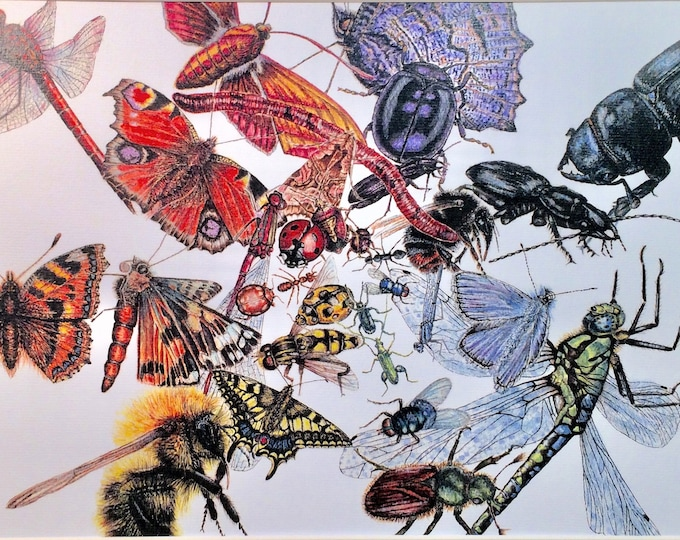 Insect medley prints