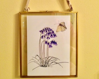 Bluebell and Brimstone Butterfly, Victorian-style Metal Hinged floating frame