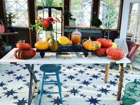 Storyteller Fairytale Pumpkin Mix