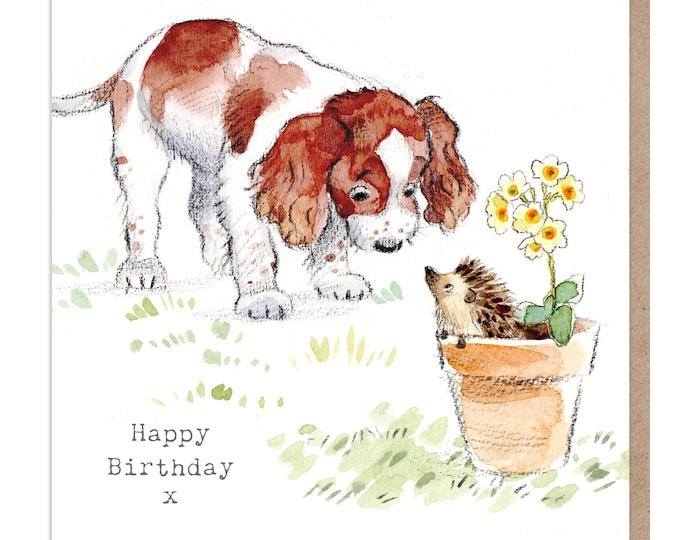 Dog Birthday Card - Quality Greeting Card - Charming illustration - 'Absolutely barking' range - Springer Spaniel- Made in UK -  ABE012