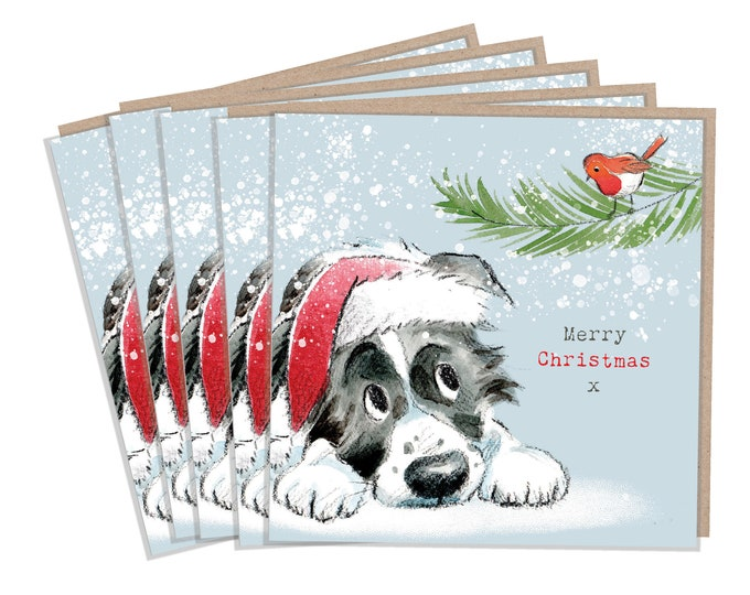 5 Quality Christmas Cards - 1 design 5 Cards  - Christmas Card pack - dog cards - Charming Border Collie illustration- Made in UK -