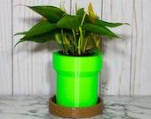Mario Planter - Succulent Planter Warp Pipe Mario Bros