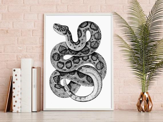 5x7 Snake Print Garter Snake Print Snake Illustration Snake Art Print Herper Gift Original Reptile Art