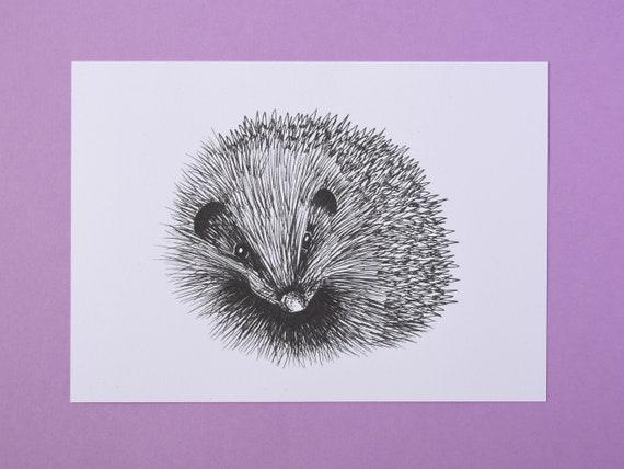 Small Hedgehog Art Print, black and white – Mammal Art Print – Nature Art Print – Unframed A5 size
