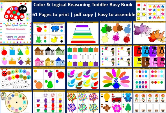 Toddler Busy Binder  Color and Logical Reasoning Busy Book