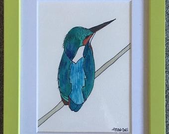 Fledgling Kingfisher