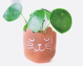 Purrfect Cat Plant Pot - Cute Small Terracotta Planter