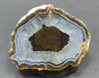 21.93 carats Feather Agate Indonesia