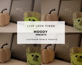 LLF Moody Presets for Lightroom 3 Pack