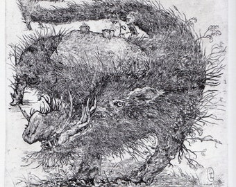 Etching astonished bird with passepartout etching gravure aquaforte