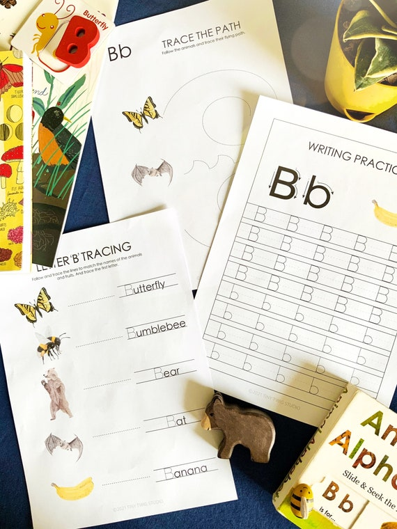 Letter B early learning resources bird poster  alphabet B