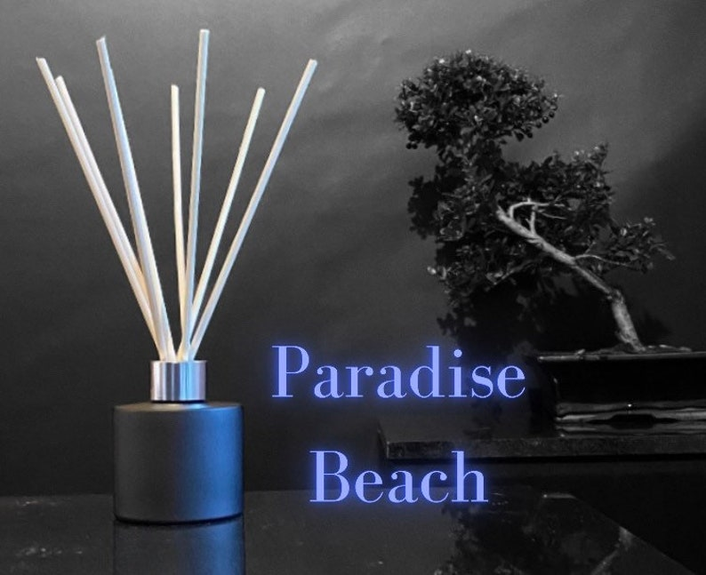 Luxury Scented REEED DIFFUSER with Sticks Essential Oil image 0