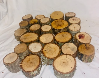 """Rustic Wood Log Stumps - 20 real wood stumps- assorted types - 2"""" -3"""" -rustic wedding, table centerpiece - fairy garden decor - crafting"""