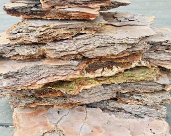 Natural Pine Tree Bark - 1 pound