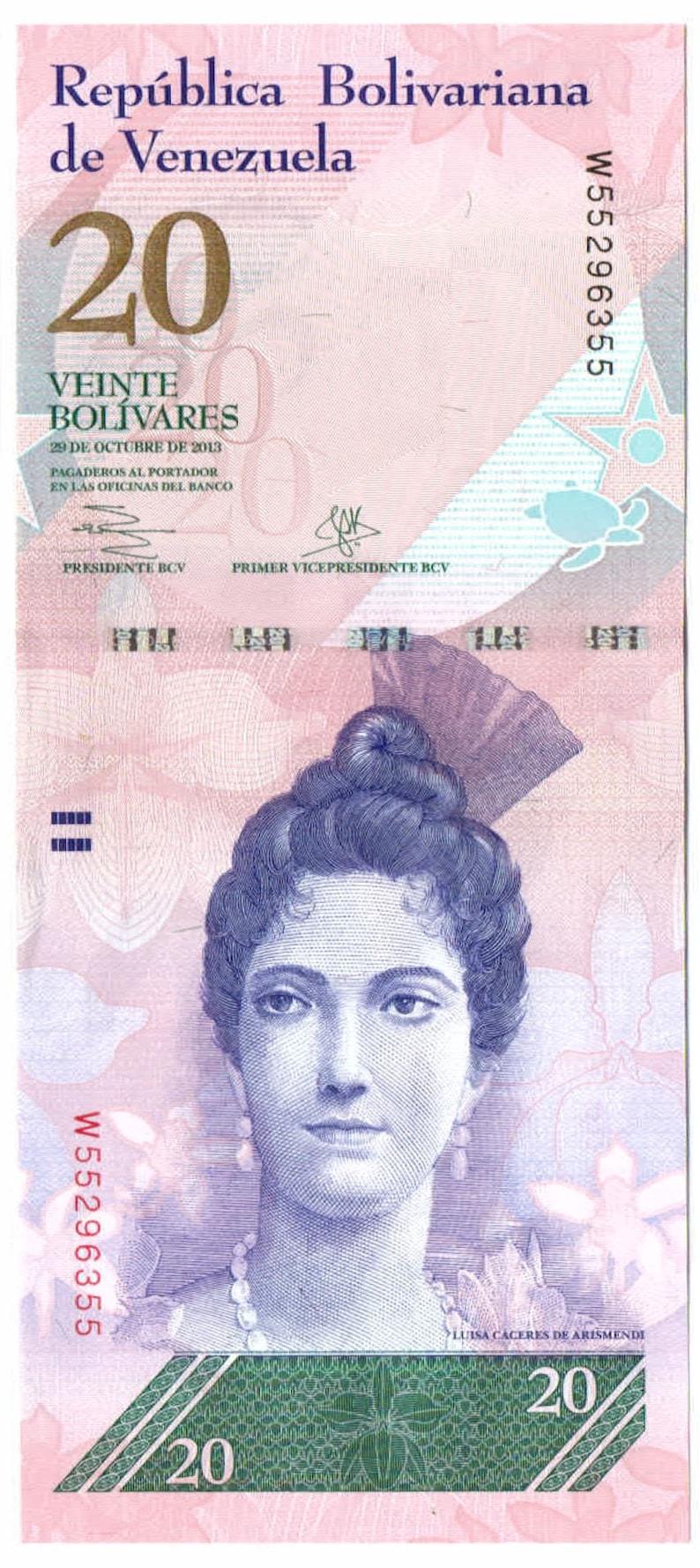 Hawksbill Sea Turtles 20 Bolivares Venezuela Authentic Banknote for Craft Making Luisa C\u00e1ceres de Arismendi